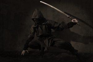 translation ninja